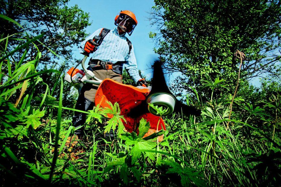 Paysagiste : entretien jardin